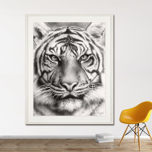 Koshi Takagi – Eyes of the tiger