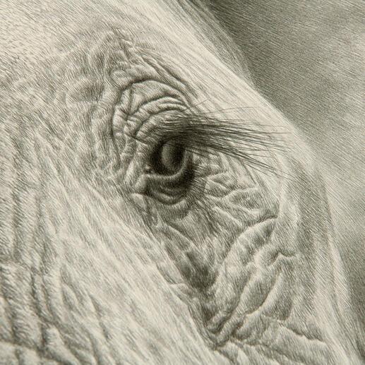 Über 1 Million handgemalte Striche lassen das Werk fotorealistisch wirken.