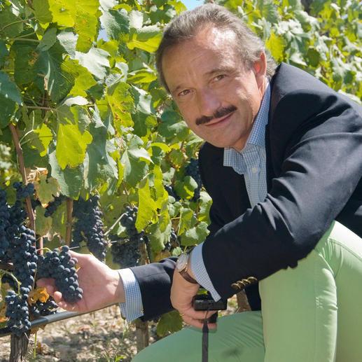 Comte Stephan 2013, Château d'Aiguilhe, Côtes de Castillon AOC, Bordeaux, Frankreich Von einem der erfolgreichsten Weinmacher in Bordeaux.
