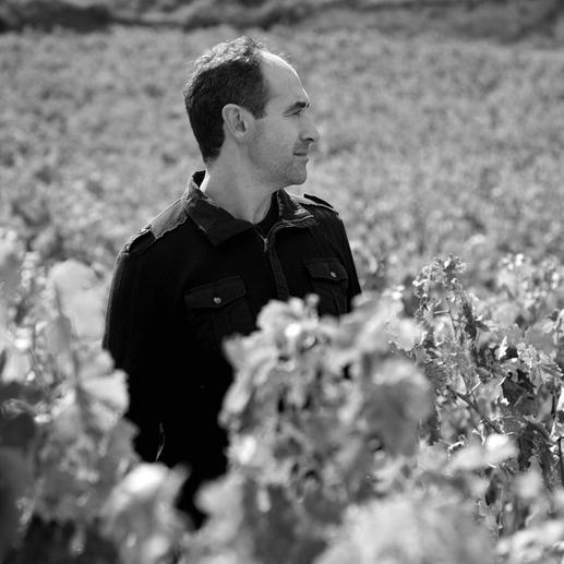 """Hazaña Viñas Viejas 2014, Bodegas Abanico, Rioja, Spanien """"Einfach eines der größten Schnäppchen in der Rioja, das man für Geld kaufen kann."""" (Robert Parker, www.robertparker.com, Interim – 07/2015)"""