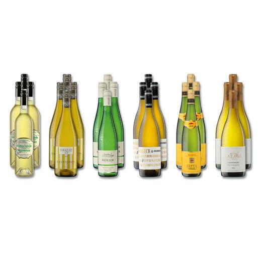 """Weinsammlung """"Die kleine Weißwein-Sammlung Winter 2016"""", 24 Flaschen - Wenn Sie einen kleinen, gut gewählten Weinvorrat anlegen möchten, ist dies jetzt besonders leicht."""