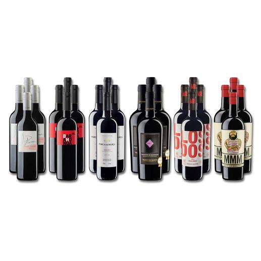 """Weinsammlung """"Die kleine Rotwein-Sammlung Frühjahr 2017"""", 24 Flaschen - Wenn Sie einen kleinen, gut gewählten Weinvorrat anlegen möchten, ist dies jetzt besonders leicht."""