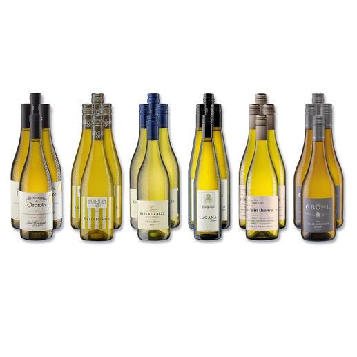 """Weinsammlung """"Die kleine Weißwein-Sammlung Herbst 2017"""", 24 Flaschen Wenn Sie einen kleinen, gut gewählten Weinvorrat anlegen möchten, ist dies jetzt besonders leicht."""
