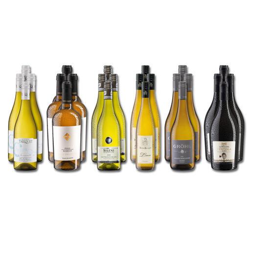 Weinsammlung - Die kleine Weißwein-Sammlung Frühjahr 2022, 24 Flaschen Wenn Sie einen kleinen, gut gewählten Weinvorrat anlegen möchten, ist dies jetzt besonders leicht.