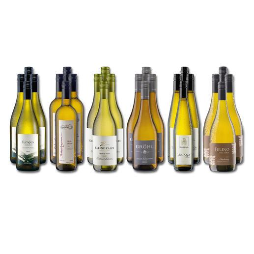 """Weinsammlung """"Die kleine Weißwein-Sammlung Winter 2017"""", 24 Flaschen - Wenn Sie einen kleinen, gut gewählten Weinvorrat anlegen möchten, ist dies jetzt besonders leicht."""