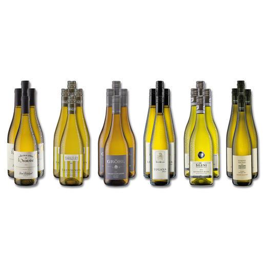 """Weinsammlung """"Die kleine Weißwein-Sammlung Frühjahr/Sommer 2018"""", 24 Flaschen - Wenn Sie einen kleinen, gut gewählten Weinvorrat anlegen möchten, ist dies jetzt besonders leicht."""