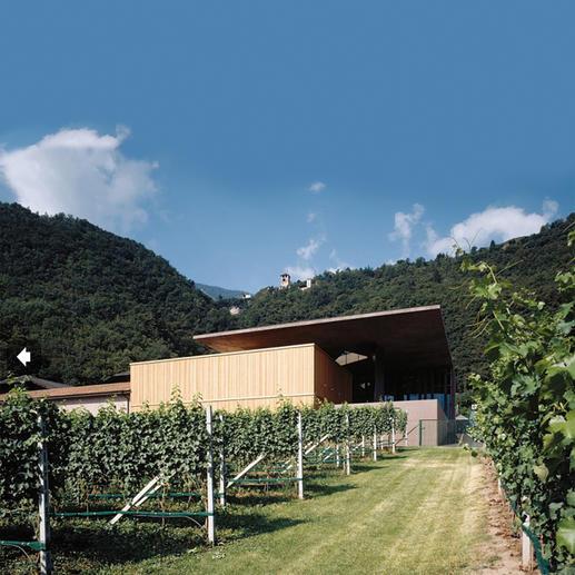 """Pinot Bianco Nals Margreid 2016, Südtirol, Italien """"Ein fantastischer Weinwert. 92 Punkte."""" (James Suckling, www.jamessuckling.com, 20.10.2017)"""