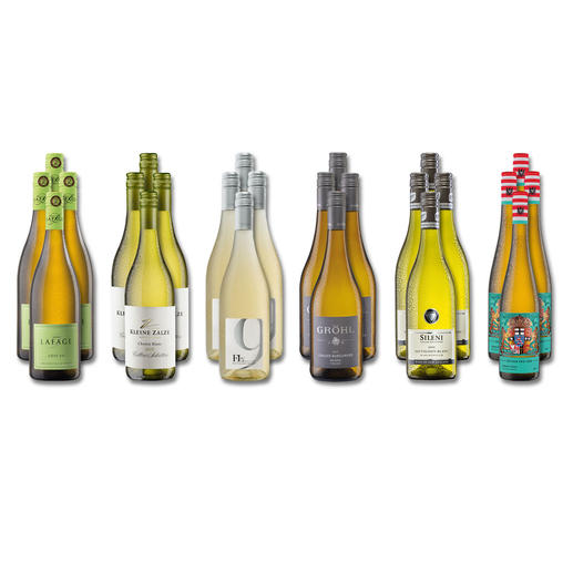 """Weinsammlung """"Die kleine Weißwein-Sammlung Sommer 2018"""", 24 Flaschen - Wenn Sie einen kleinen, gut gewählten Weinvorrat anlegen möchten, ist dies jetzt besonders leicht."""