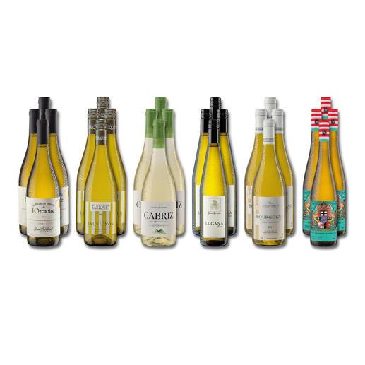 """Weinsammlung """"Die kleine Weißwein-Sammlung Herbst 2018"""", 24 Flaschen - Wenn Sie einen kleinen, gut gewählten Weinvorrat anlegen möchten, ist dies jetzt besonders leicht."""