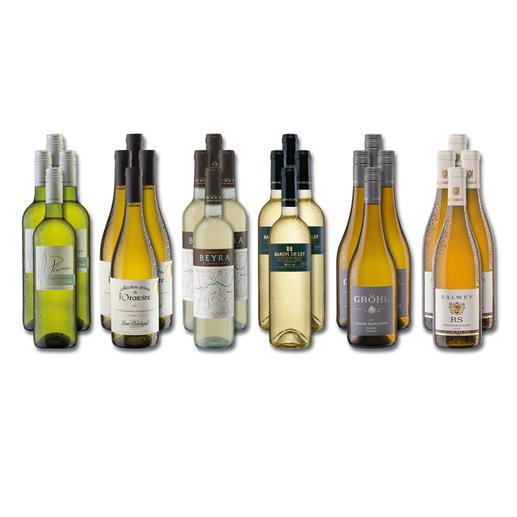 """Weinsammlung """"Die kleine Weißwein-Sammlung Frühjahr/Sommer 2019"""", 24 Flaschen Wenn Sie einen kleinen, gut gewählten Weinvorrat anlegen möchten, ist dies jetzt besonders leicht."""
