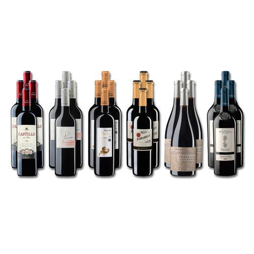 """Weinsammlung """"Die kleine Rotwein-Sammlung Sommer 2019"""", 24 Flaschen Wenn Sie einen kleinen, gut gewählten Weinvorrat anlegen möchten, ist dies jetzt besonders leicht."""