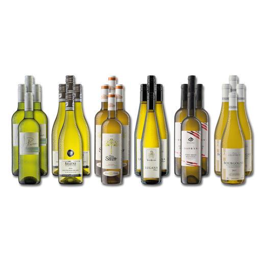 """Weinsammlung """"Die kleine Weißwein-Sammlung Winter 2019"""", 24 Flaschen Wenn Sie einen kleinen, gut gewählten Weinvorrat anlegen möchten, ist dies jetzt besonders leicht."""