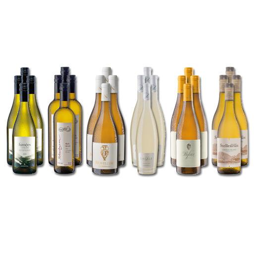 Weinsammlung - Die kleine Weißwein-Sammlung Sommer 2020, 24 Flaschen Wenn Sie einen kleinen, gut gewählten Weinvorrat anlegen möchten, ist dies jetzt besonders leicht.