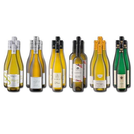 Weinsammlung - Die kleine Weißwein-Sammlung Winter 2020, 24 Flaschen Wenn Sie einen kleinen, gut gewählten Weinvorrat anlegen möchten, ist dies jetzt besonders leicht.