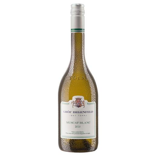 Tokaj Muscat Blanc 2020, Gróf Degenfeld Wine Estate, Tokaj, Ungarn Weltberühmt für seine edelsüßen Weine. Doch der Geheimtipp ist dieser Tokaj Muscat Blanc.