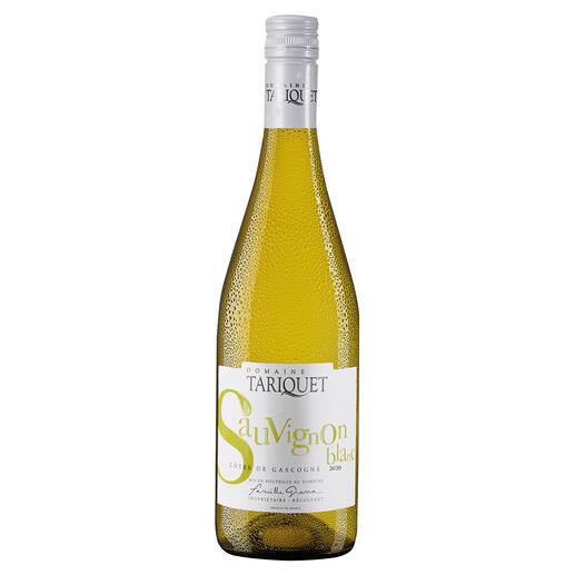Tariquet Sauvignon Blanc 2020, Domaine du Tariquet, Côtes de Gascogne, Frankreich Der Weißwein des Jahres aus Frankreich (Weinwirtschaft 01/2012 über den Jahrgang 2011)